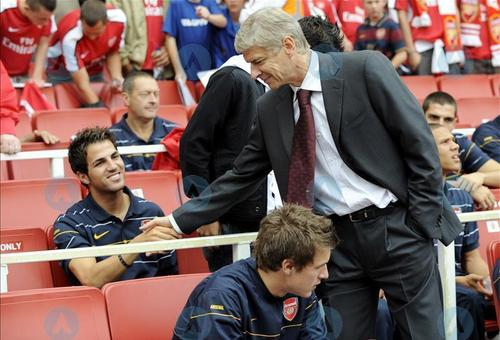 Cesc Fabregas 바탕화면 containing a business suit titled Fabregas and wenger