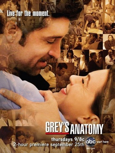 Grey's Anatomy wallpaper probably with a brasserie and anime titled Grey's Anatomy Season Five Poster