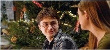 HBP - Harry and Ginny