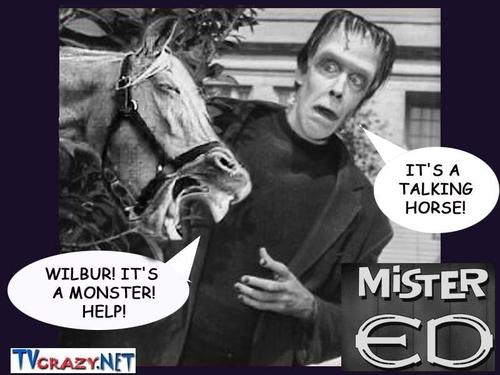 Maddie McCann Wallpaper: Classic Television Revisited Images Herman Munster Meets