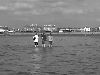 Me and vrienden in the sea