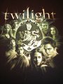 New twilight shirt (front) ! - twilight-series photo