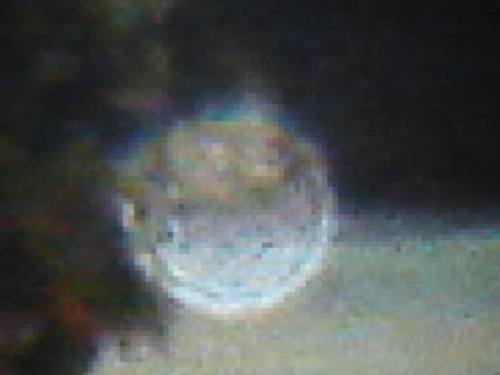 Night Circles - ufo-and-aliens Photo