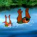 Robin ڈاکو, ہڈ & Little John