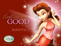 Disney Fairies Rosetta پیپر وال