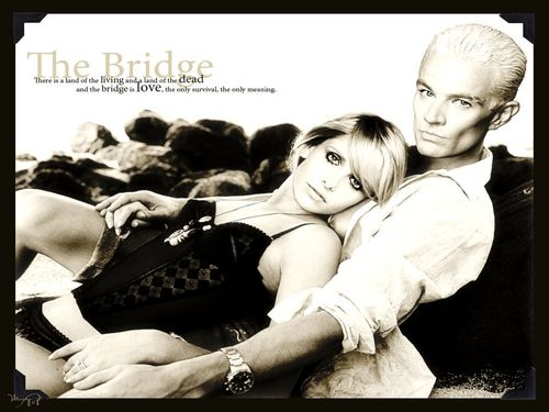 Sarah Michelle Gellar wallpaper probably containing a sign, a newspaper, and skin called SMG & James Marsters