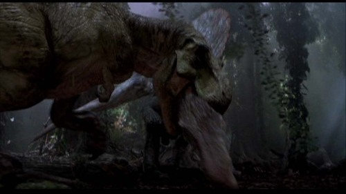 Jurassic Park پیپر وال containing a triceratops entitled Scenes from Jurassic Park III [Part 5]