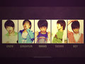 Shinee - shinee photo