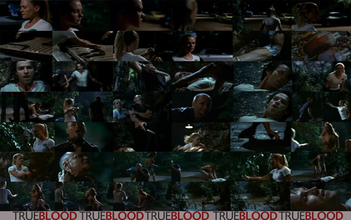 Sookie Saves Bill Part 1. - true-blood Wallpaper