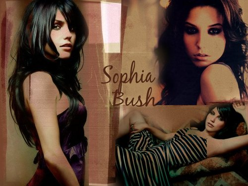 Sophia buisson, bush