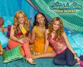 The Cheetah Girls One World - cheetah-girls-one-world wallpaper