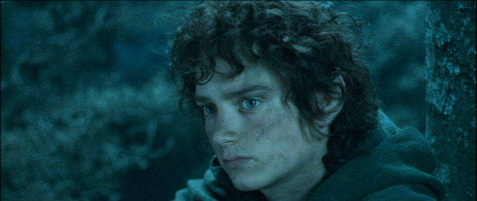 essay on frodo baggins in fellowship of the ring The lord of the rings: the hobbit this essay the lord of the rings: the hobbit and other 64,000+ term papers, college essay examples and free essays are available now on reviewessayscom autor: review • october 24, 2010 • essay • 577 words (3 pages) • 1,207 views.