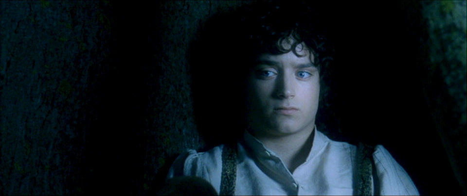 essay on frodo baggins in fellowship of the ring Introduction for my essay i am writing about the importance of the well known character frodo baggins frodo baggins is important because he reinforces the themes of courage, loyalty and friendship, and the fact that anyone can do anything.
