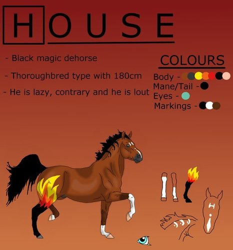 The House MD cast as horses