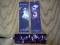 Twilight Bookmarks at Borders! - twilight-series photo