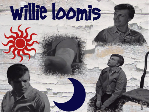 Willie Loomis WP 5