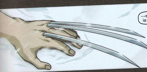 Wolverine's claws - wolverine Photo