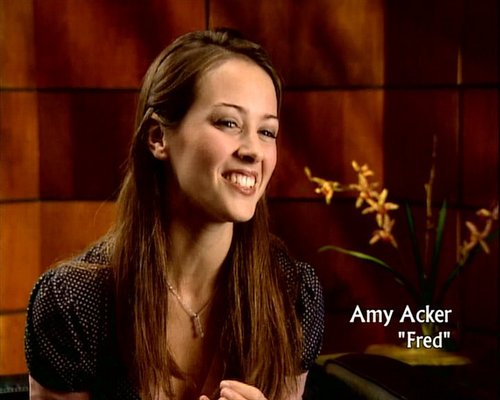 Amy Acker kertas dinding probably containing a portrait called amy acker on behind the scenes of Angel