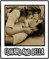 bedward - twilight-series photo