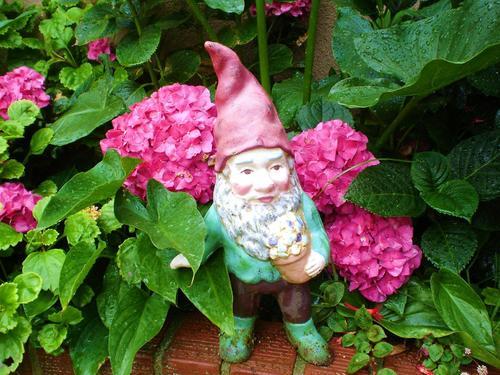 fairytale gnome
