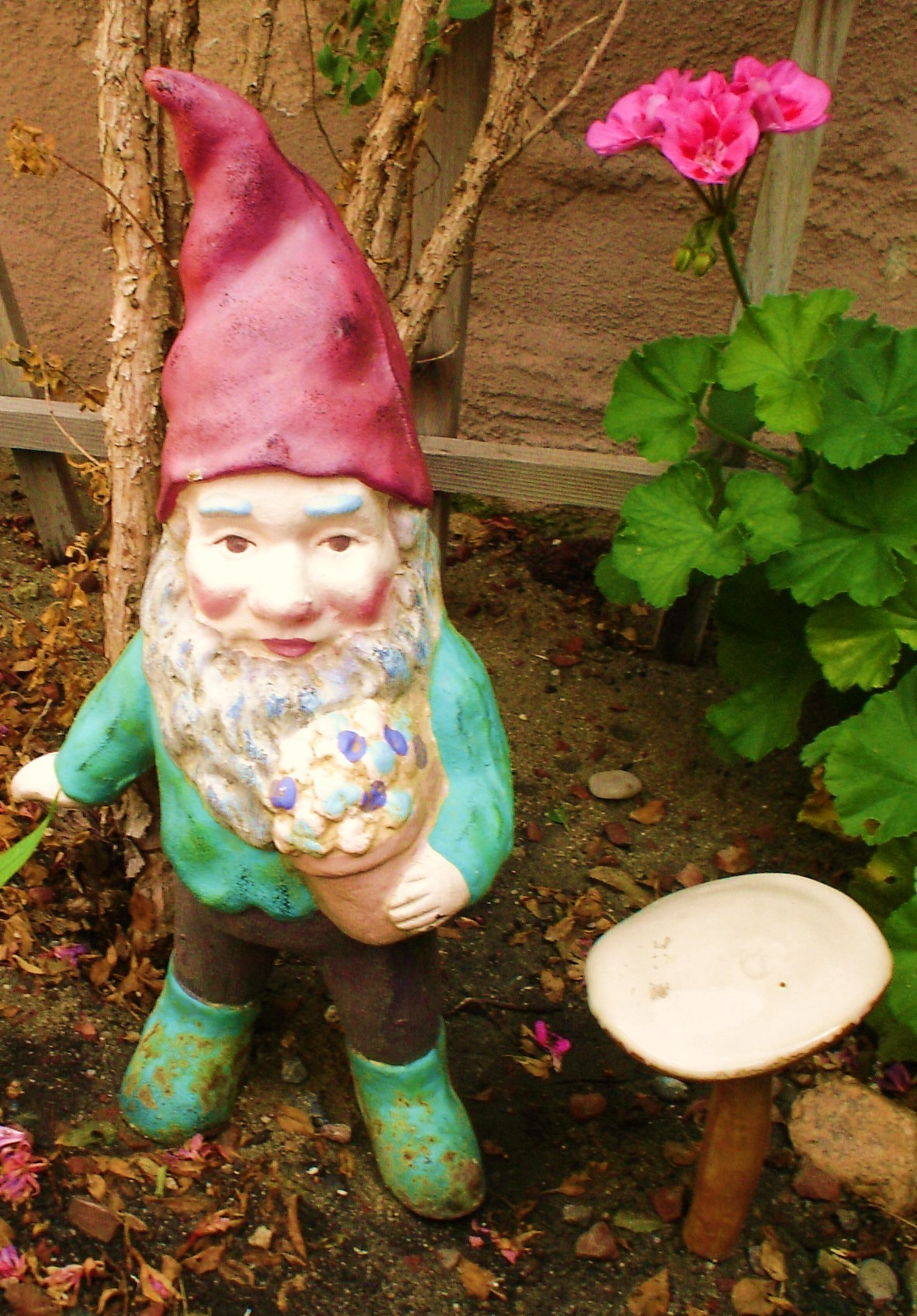 Gnomes images gnomes in the garden HD wallpaper and background ...