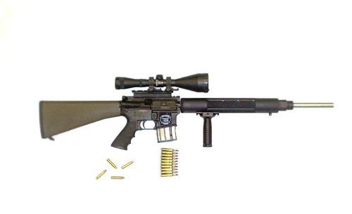 raiden's guns
