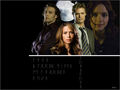 save Blood Ties - kyle-schmid wallpaper