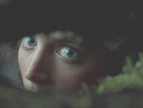 sees the nazgul