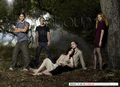 2008 EW - twilight-series photo