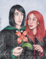 A Lily for you - severus-snape fan art
