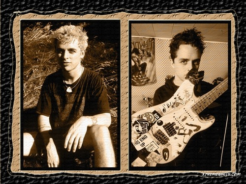 Green Day wallpaper probably containing a newspaper and a sign called Billie Joe