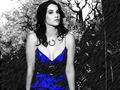 Cobie - fanpressions wallpaper