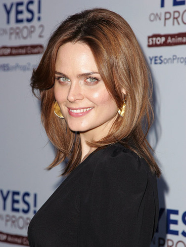 Emily Deschanel Обои with a portrait titled Emily Deschanel