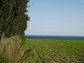Funny landscape angle
