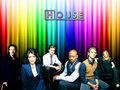 House Cast - house-md-cast wallpaper