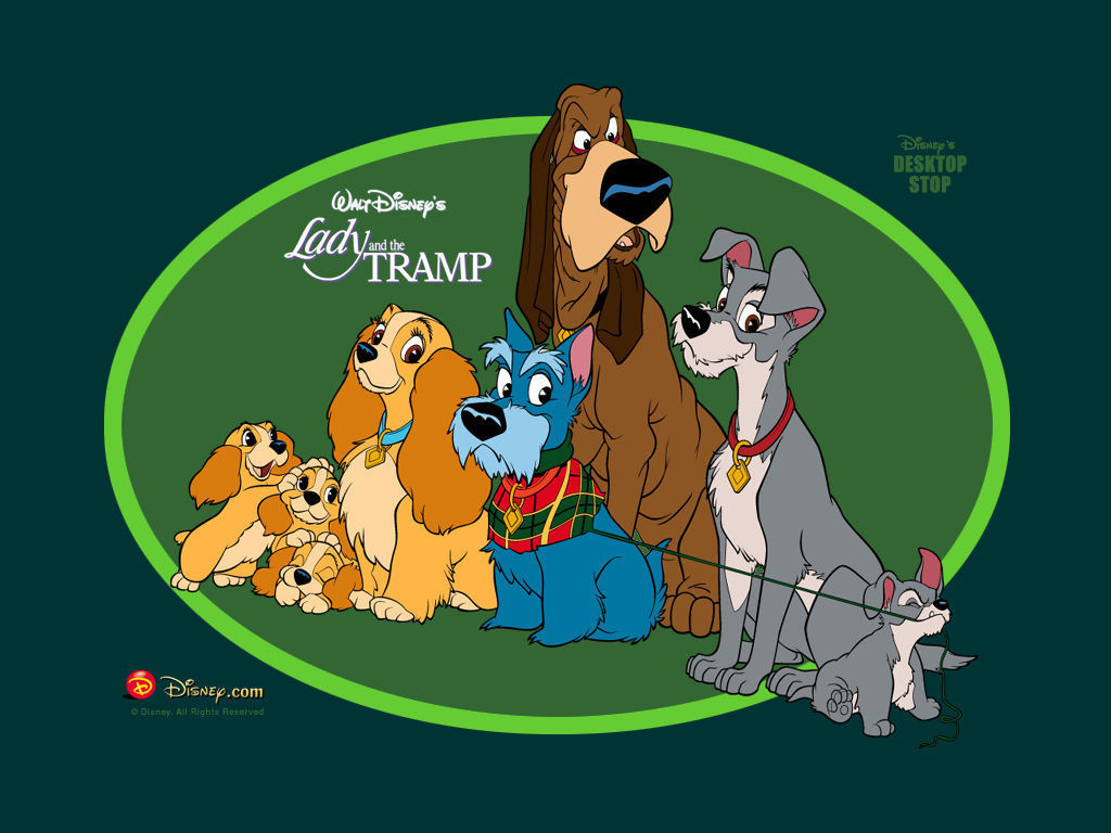 lady and the tramp Lady and the tramp is a 1955 american animated romance film produced by walt disney and released to theaters on june 22, 1955, by buena vista distribution, making it the first disney animated film to not be distributed by rko radio pictures.