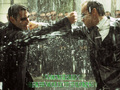 Matrix Revolutions