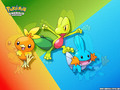 pokemon - Pokemon Emerald Version wallpaper