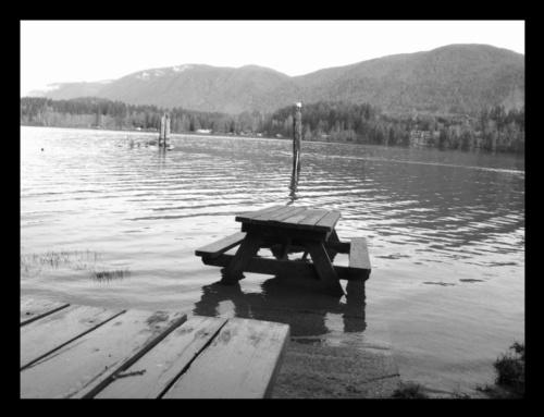 misceláneo shot of lake cowichan