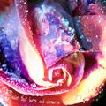 Spuffy Passion Flower