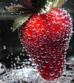 Strawberry III - photography photo