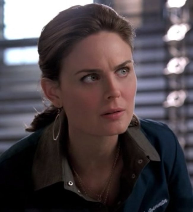 Bones images Temperance Brennan - The Perfect Pieces in the Purple ...