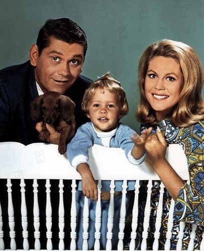 Bewitched wallpaper containing a picket fence called The Bewitched family