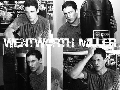 Wentworth Miller দেওয়ালপত্র