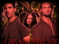 jack,kate,sawyer  - love-triangles photo