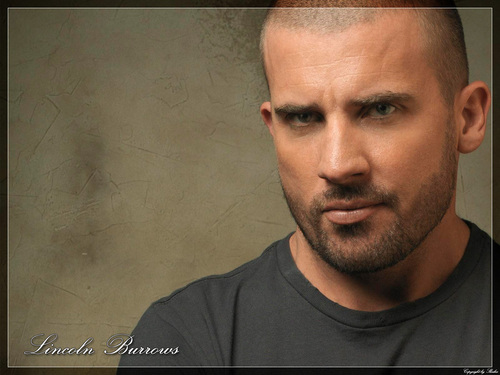 Televisione wallpaper called prison break