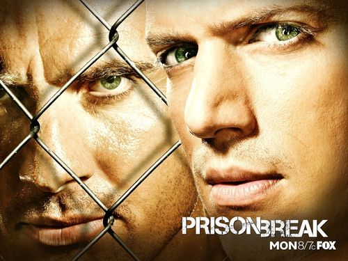 televisão wallpaper with a chainlink fence titled prison break