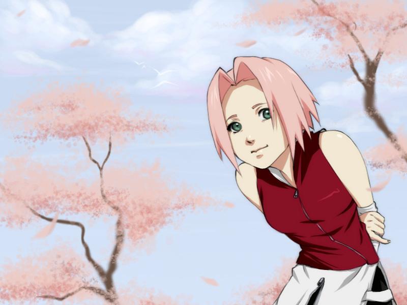 sakura  Haruno Sakura Wallpaper 2459612  Fanpop