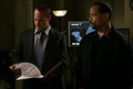 10x01 : Elliot Stabler & Fin - law-and-order-svu photo