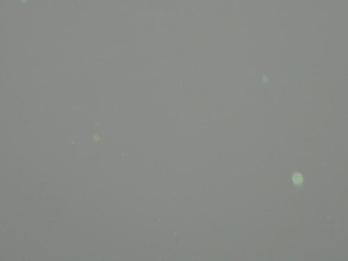 A Green día circulo, círculo (An alien aerostockian)